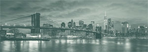 Dino Puzzle 6000 Brooklyn Bridge